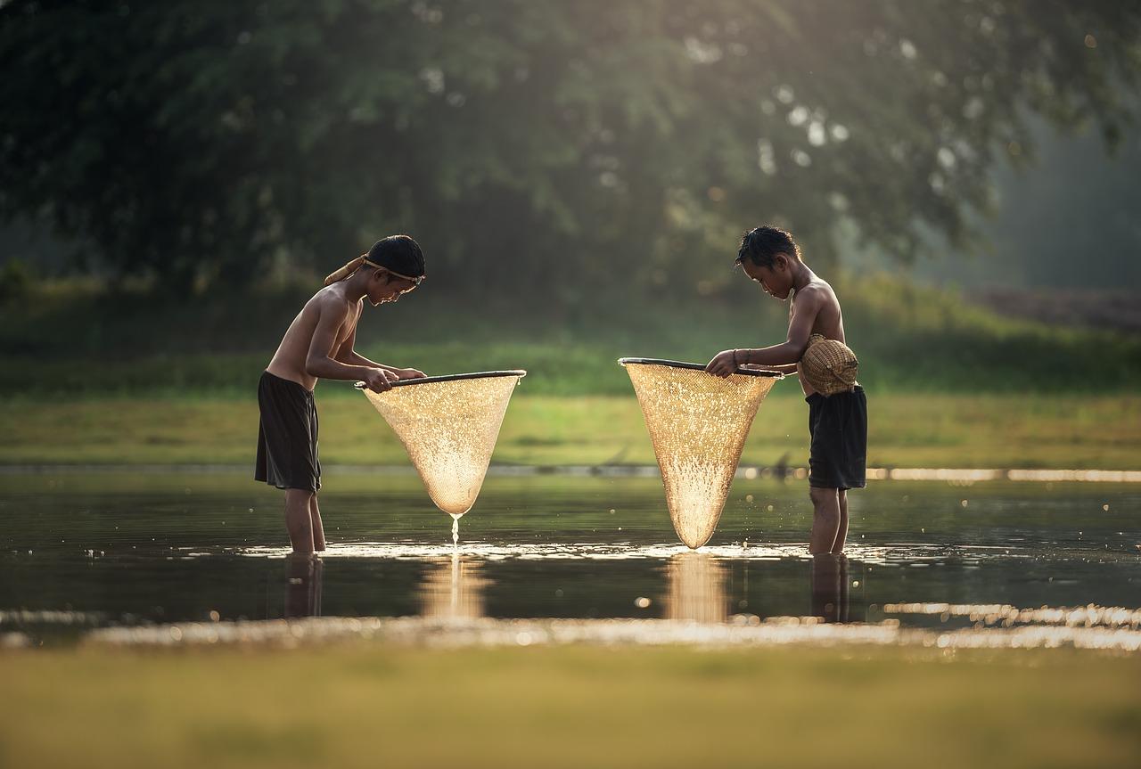 Documentaire «La Vie dans l'eau»