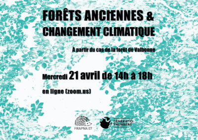 Conférence en ligne «forêts anciennes et changement climatique»